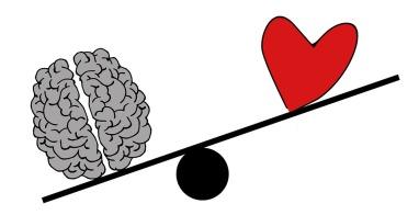 brain-2146167_960_720